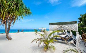 Zanzibar - Xenos Travel